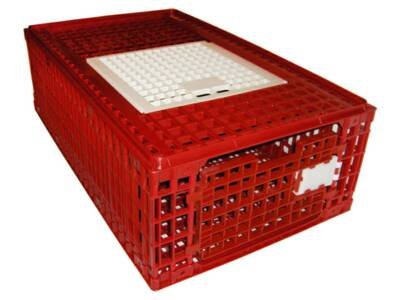 Crate for transport of poultry type M